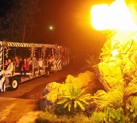 Bali Safari and Marine Park Tickets - Flat 18% off