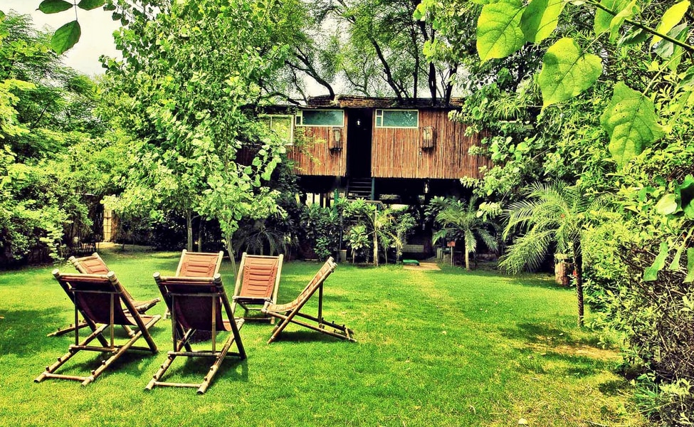 Tree House Jaipur Throughout Luxury Stay At The Tree House Resort Jaipur Thrillophilia