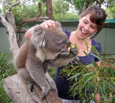 Phillip Island Beach & Wildlife Escape in Melbourne