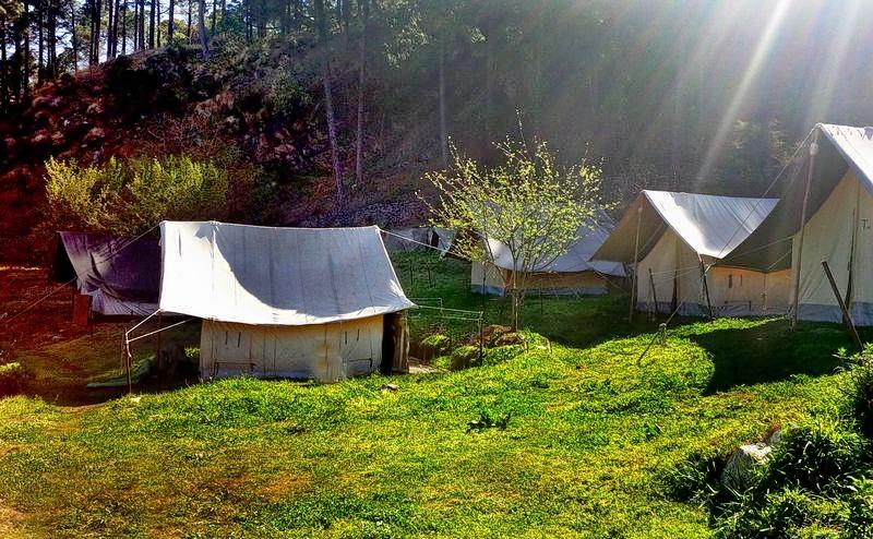 Masinagudi_camping_(2).jpg