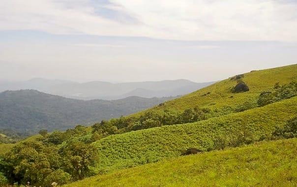 M_brahmagiri_hill_trek_1.jpg.jpg