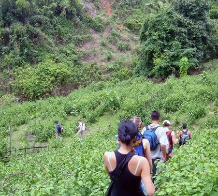 Trek to Triund in Dharamshala
