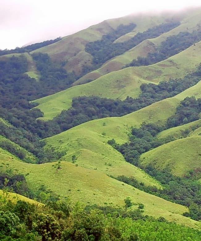1520338081_trekking.jpg