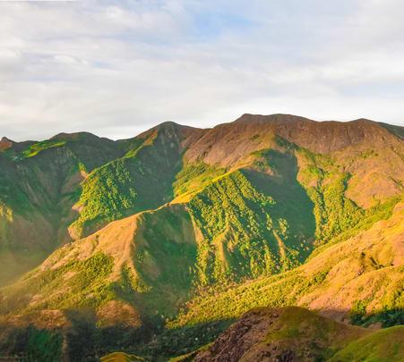 Munnar Adventourous Trekking Flat 26% off