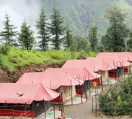 Camping at Snow Trail, Chail, Shimla