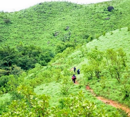 Pushpagiri Trek