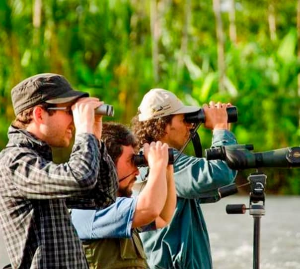 Birding & Photography Tour In Coorg