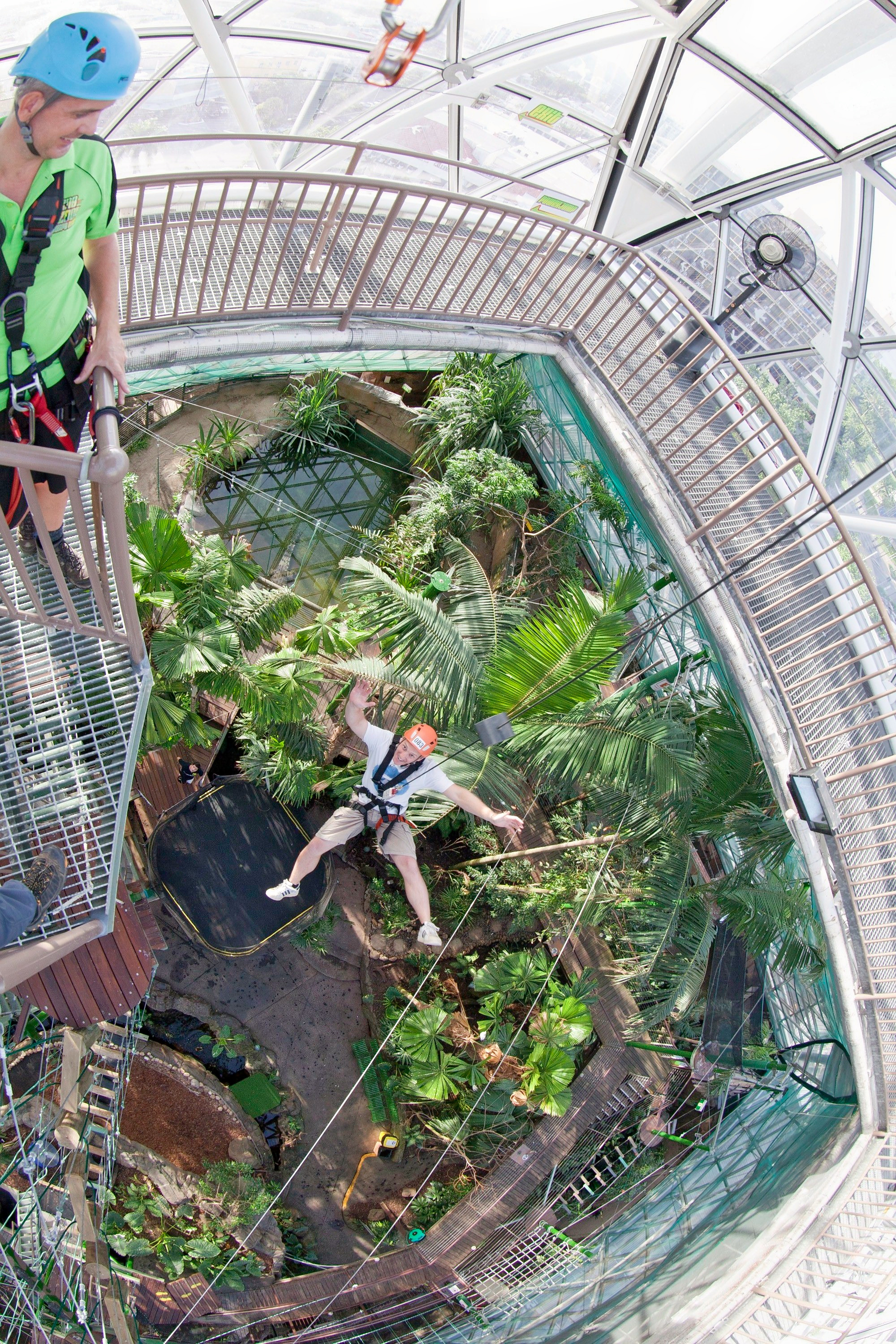 1598940214_cairns_zoom_and_wildlife_dome_powerjump_hero.jpg