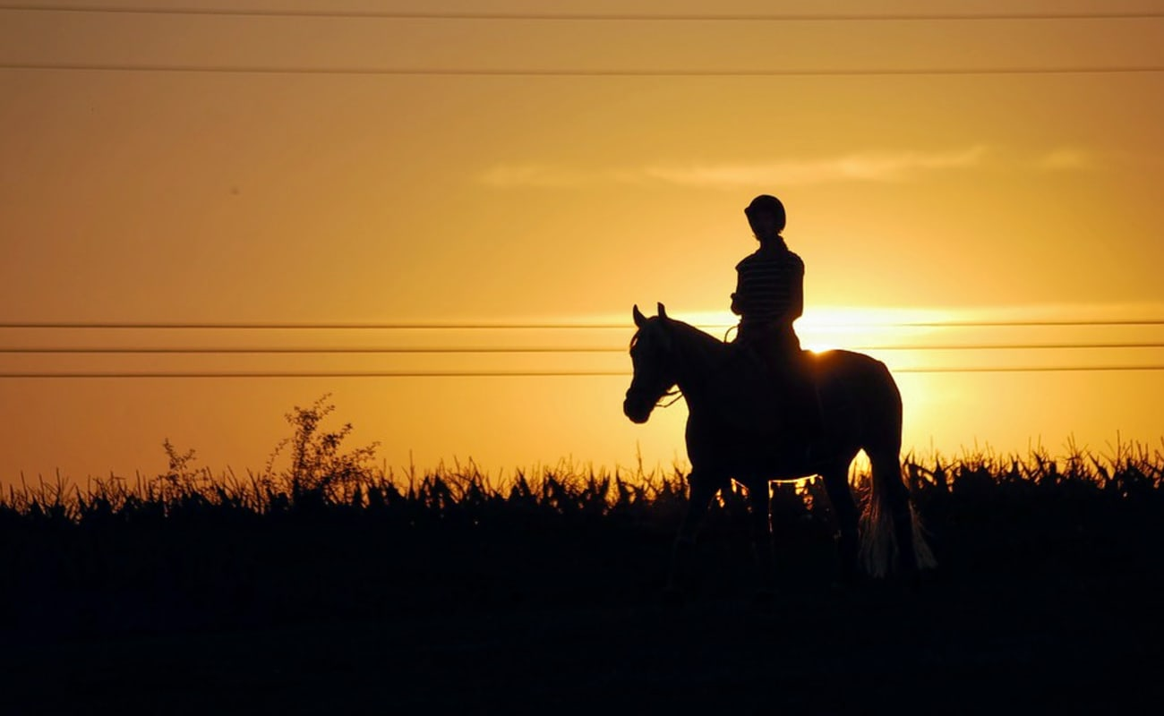 Offbeat Jeep Safari and Horse Riding in the Countryside