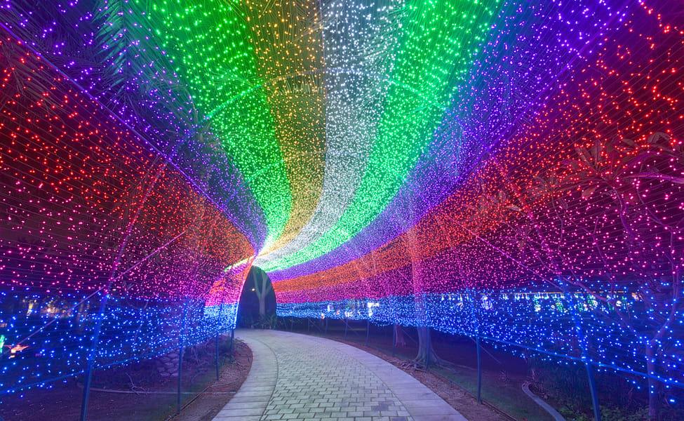 Dubai Garden Glow Tickets Save 30 Book Online