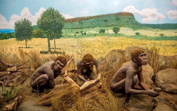 1481609137_prehistory_at_nairobi_national_museum.jpg