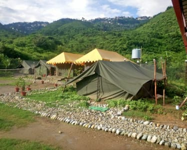 Camp with Natural Swimming Pool near Mussoorie
