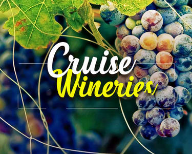 Wine Tour in Bangalore Flat 16% Off