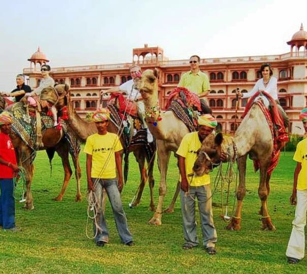 Camel Polo at Dausa