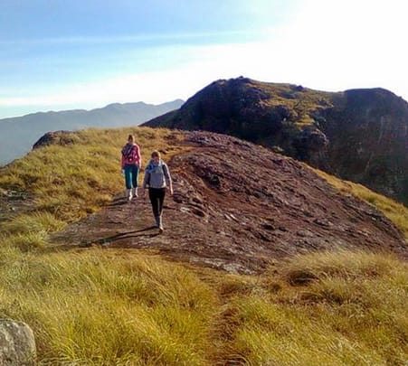 Trek To Lakshmi Hills In Munnar