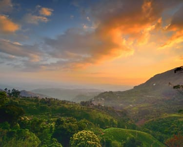 Ooty and Coonor Sightseeing Tour Flat 52% off