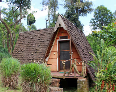 Exotic Homestay in Coorg - Flat 15% off