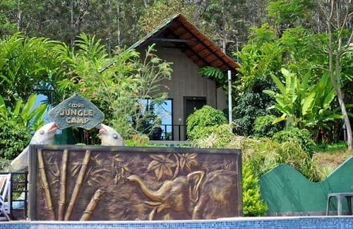 06stay At Coorg Jungle Camp Resort