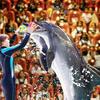 1510835951_dolphinarium5.jpg
