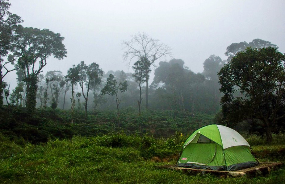 1465483752_camping_in_coorg_1.png
