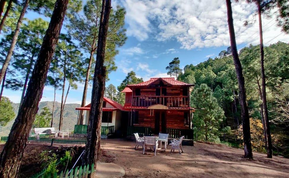 Pine Valley Resort, Kasauli | Book Online @ Flat 42% Off