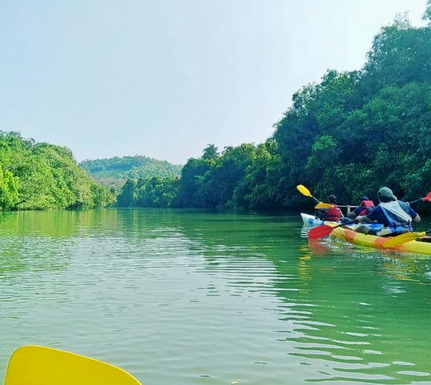 Kayaking in River Shambhavi