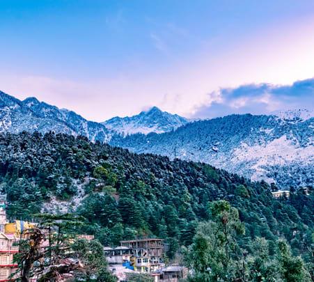 6days/5nights Himachal Pradesh Sightseeing Tour from Delhi