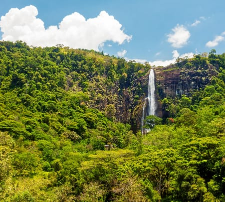 Train and Trek from Bandarawela to Bambarakanda Waterfall-flat 35% off