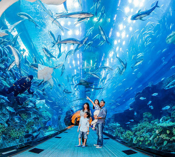 Burj Khalifa with Underwater Zoo and Dubai Aquarium