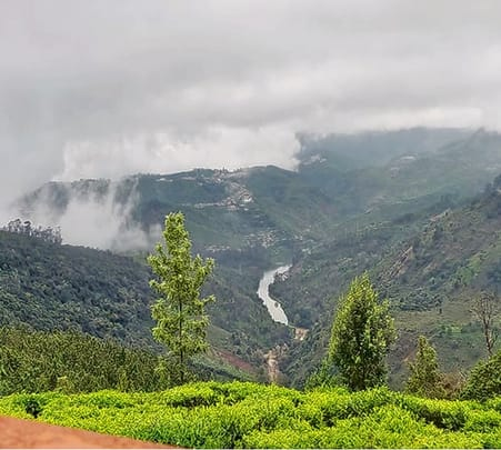 Jungle Camping and Adventures in Ooty Flat 19% off