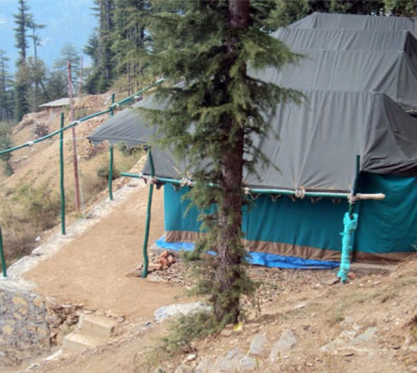 Adventure Camping Experience in Shimla