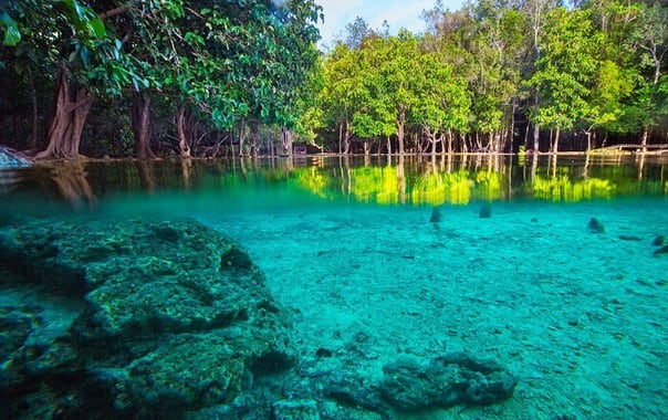 1552284709_emerald-pool-in-krabi.jpg