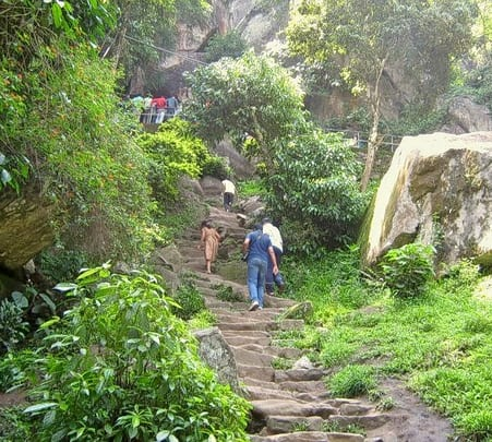 Spice Trail Of Wayanad