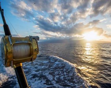 Experience Fishing in Goa Sea - Flat 17% Off