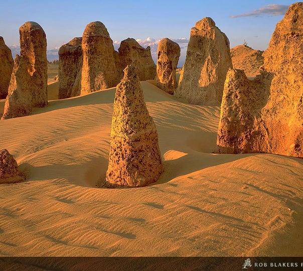 Exploring the Pinnacles and Wildlife in Western Australia