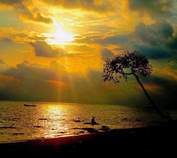 Sea Plane Ride to Havelock and Radhanagar Beach Trip from Port Blair