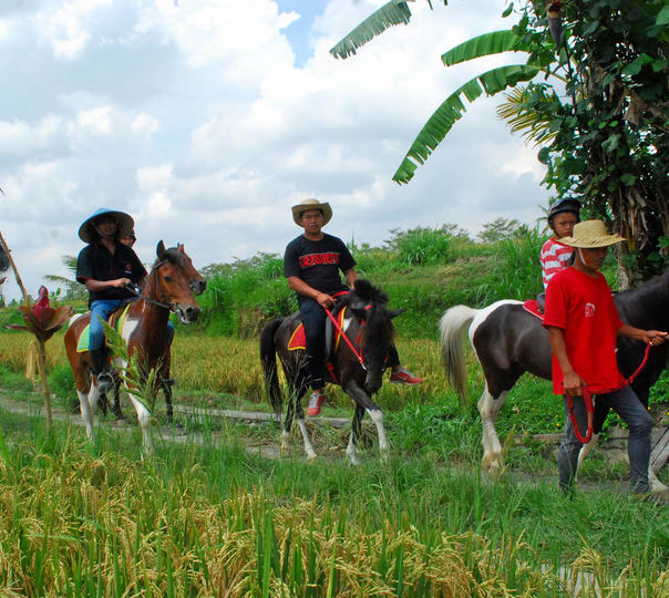 Horse Riding and Sightseeing in Bali