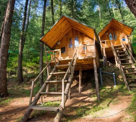 Tree House Stay with Multiple Activities, Shimla