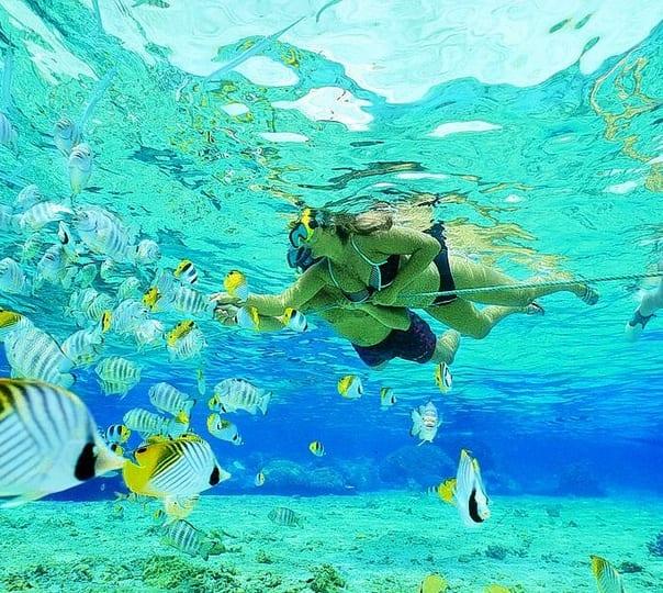 Marine Park Snorkelling Experience