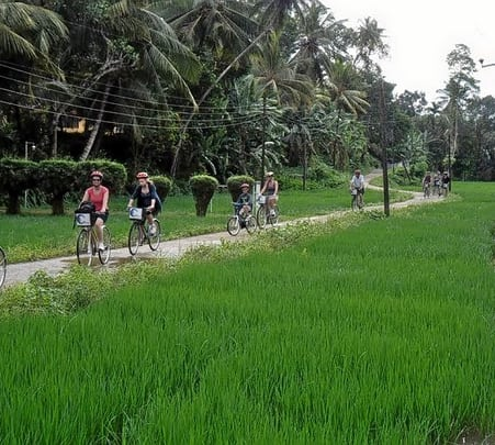 Cycling Trip to a Lagoon and Village in Galle