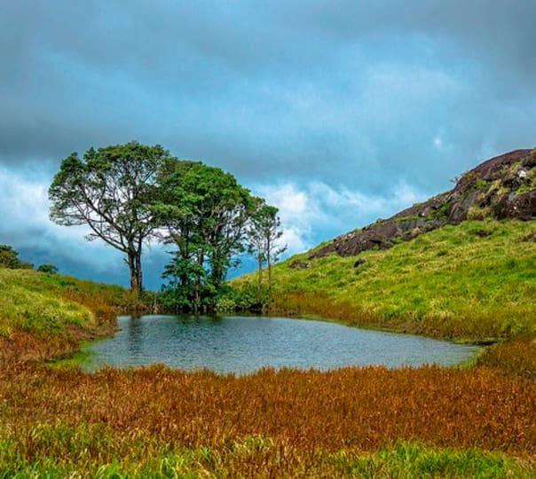 Tranquil And Alluring Kerala