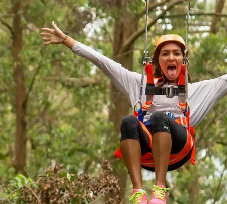 Illawarra Fly Zipline Adventure