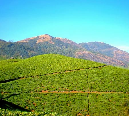 Kerala Offbeat Trails