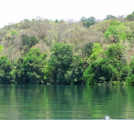 Stay at Bison River Resort in Dandeli with Rope Activities