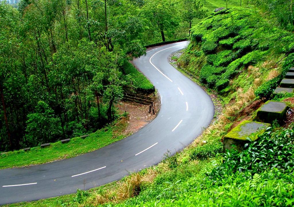 1586506318_dehradun-nainital-road-trip.jpg