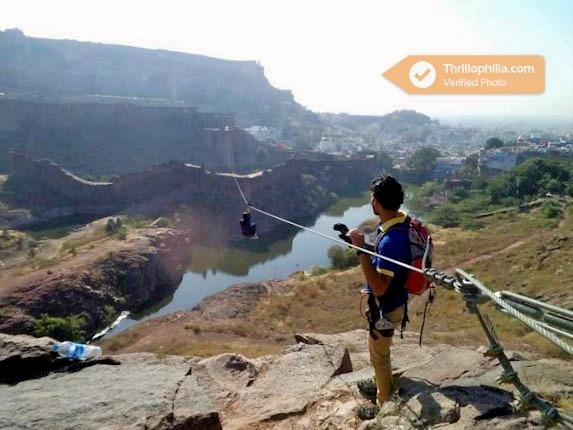 Jodhpur_flying_fox_(3).jpg