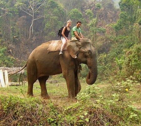 Shillong Kaziranga Tour