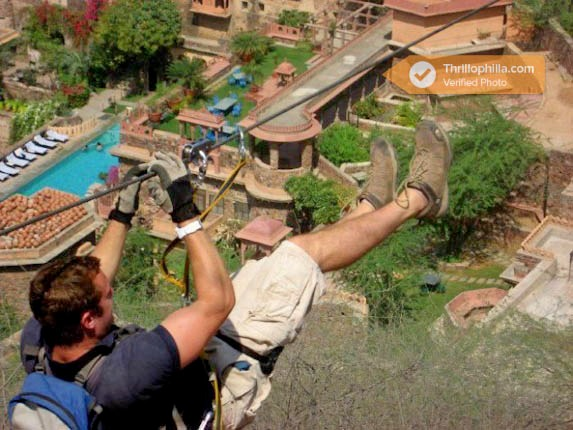 Neemrana_flying_fox_(6).jpg