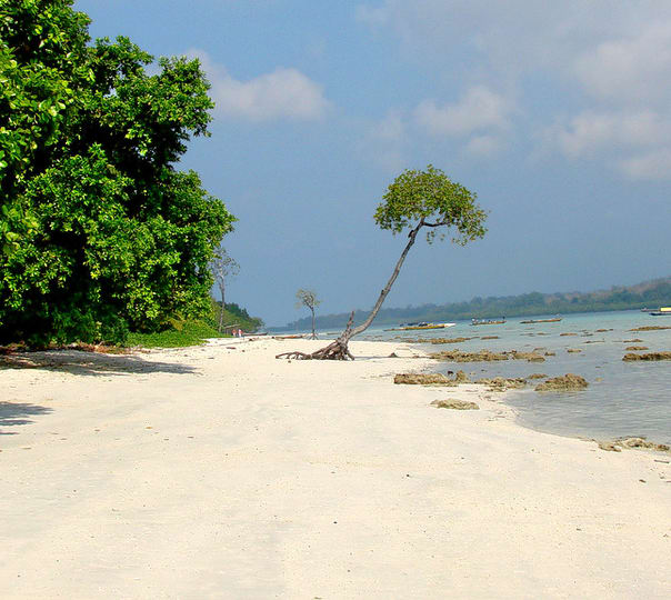 Andaman Sightseeing Tour of 10 Days