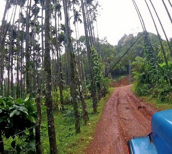 Offroad Jeep Ride in Kyathanamakki